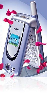 <i>Haier</i> F1100