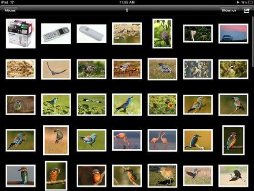 iPad 2 фотогалерея