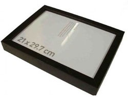 GSM Bug Frame