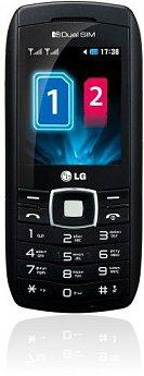 <i>LG</i> GX300